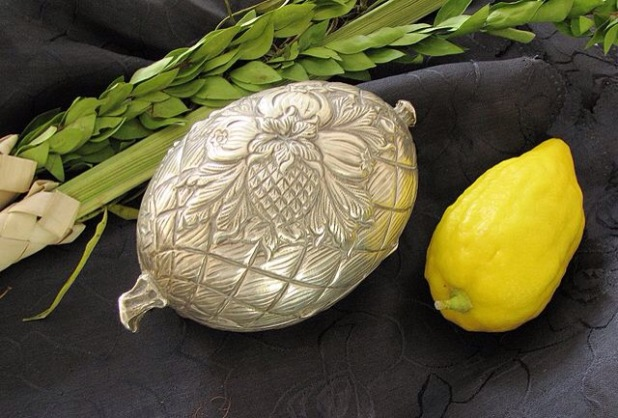 A photograph of a lulav, etrog, and metallic etrog case.